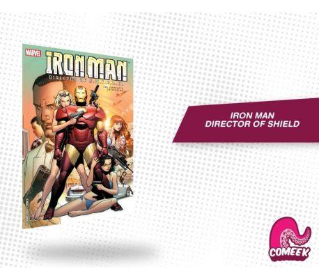 Iron Man Director of SHIELD